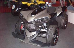 Cectek Quadriciclo Estoc i
