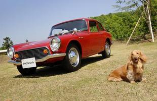Cachorros e carros históricos da Honda se juntam em um simpático ensaio