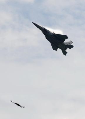 Performance do F-15SG e do F-16C