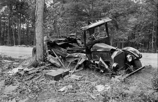 Apenas o volante do utilitário ficou intacto após colisão com árvore