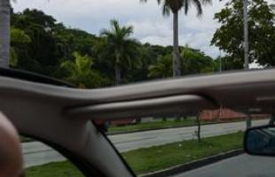 Sem o teto do Fiat 500, é possível ver todos os detalhes das Palmeiras Imperiais da Avenida Antônio Carlos, construída para ligar o Centro da capital ao complexo turístico da Pampulha