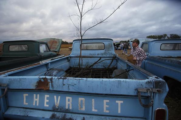 Como estavam expostos às intempéries climáticas e ladrões de peças, vários carros ficaram enferrujados, mas com bom potencial de restauração