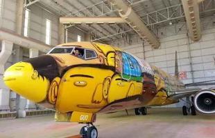 Boeing 737 da Seleção Brasileira na Copa do Mundo 2014