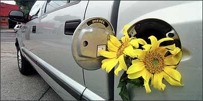 Biodiesel é ecologicamente correto e pode ser extraído de qualquer matéria prima graxa, seja de origem vegetal, animal ou residual - Euler Júnior/EM - 7/1/05