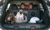 Nissan mostra conceito preparado para carregar cães com conforto de primeira classe