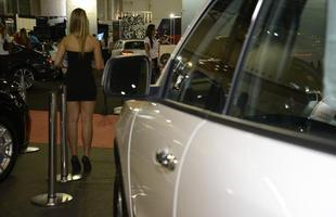 Gatas da Bienal do Automóvel 2013